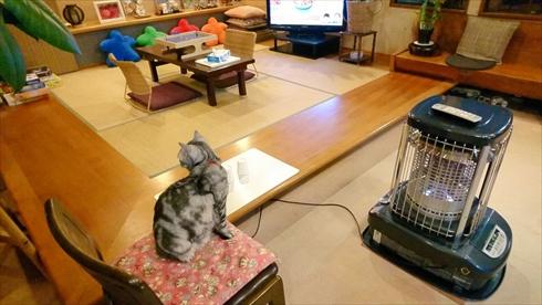ボードゲーム 旅館 猫 ねこ ネコ