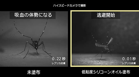 花王、肌表面を変えて蚊をよけられると発見 従来虫よけと違う方法で蚊に刺されることを防ぐ
