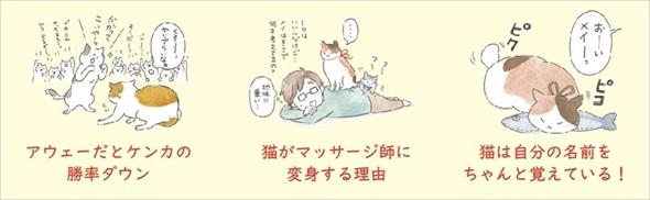猫のヒミツ