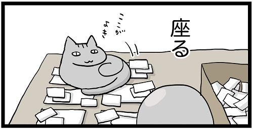 フリーランスと猫