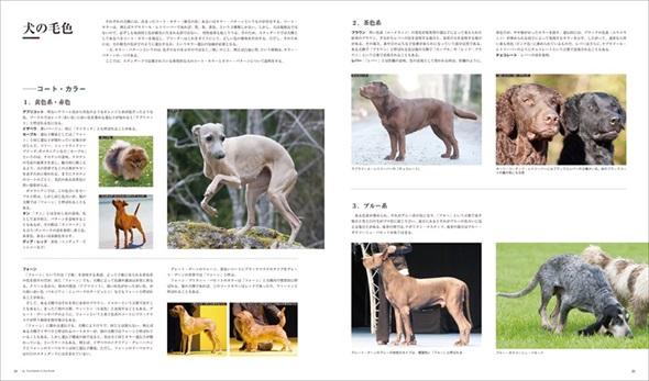 世界の犬種大図鑑