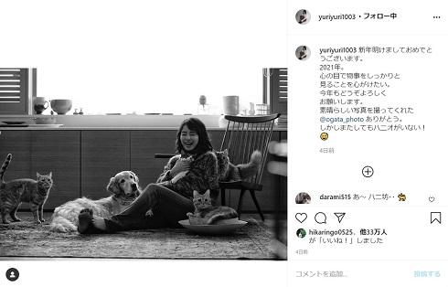 石田ゆり子 猫 犬