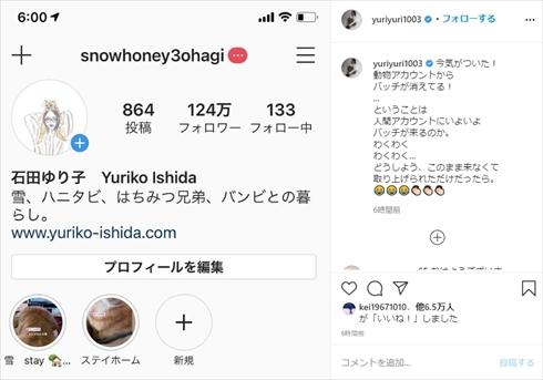 石田ゆり子 Instagram 認証バッジ 偽アカウント