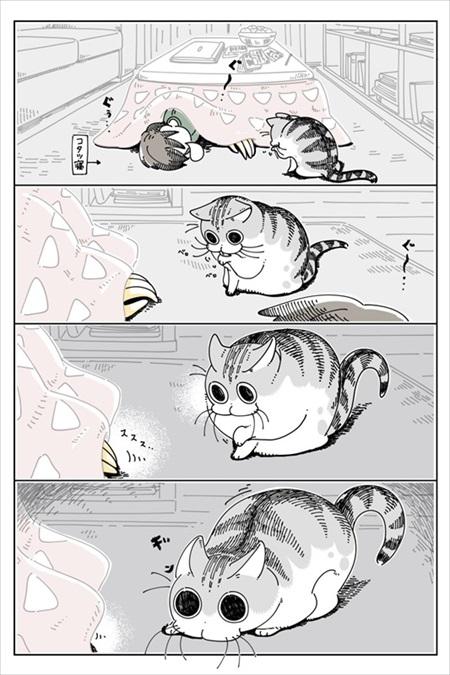 手を引っ張りだしたい猫ちゃん