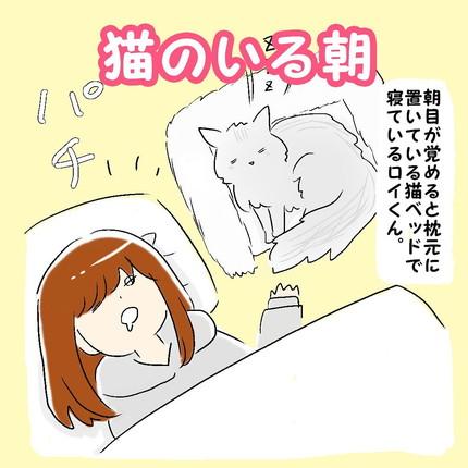 「猫のいる朝」