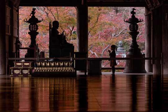 娘 シルエット 成長 春夏秋冬 写真 思い出 5年 奈良 長谷寺