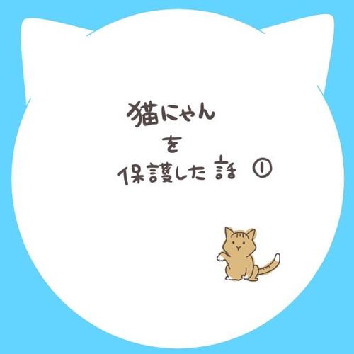 「猫にゃんを保護した話1」
