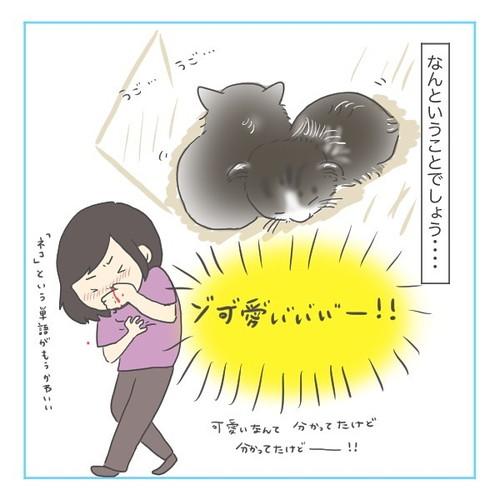 「猫にゃんを保護した話2」