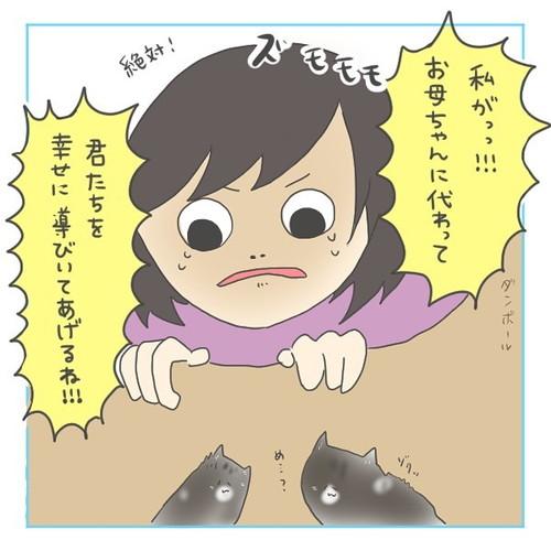 「猫にゃんを保護した話」