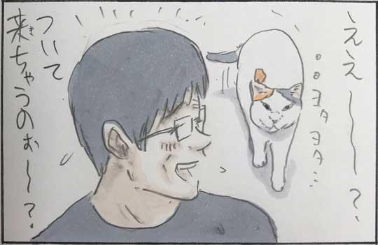 猫 漫画 拾い猫のモチャ はじめてのコタツ お父さん 子猫 あるある
