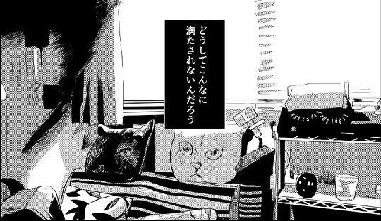 文野紋 香椎かてぃ 対談