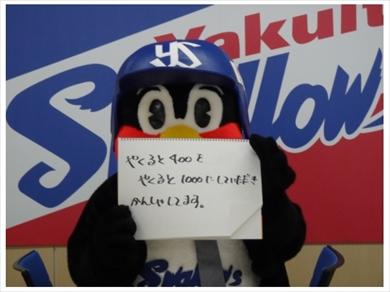 つば九郎 東京ヤクルトスワローズ 契約更改 保留 年俸 ダウン ブログ