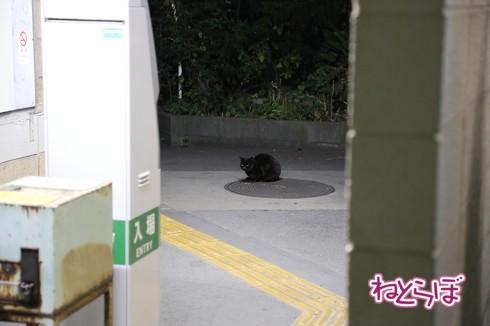 昭和 秘境駅 鶴見線