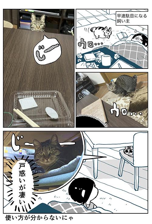 3本足のしじみちゃん112.3