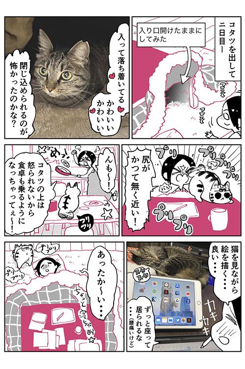 3本足のしじみちゃん113.1