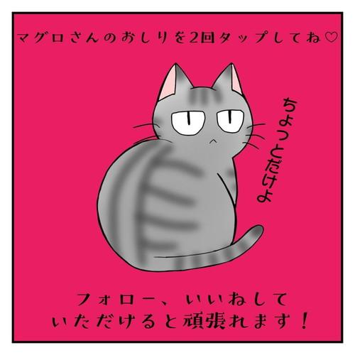 「ツンデレ猫は〇〇でものを語る」