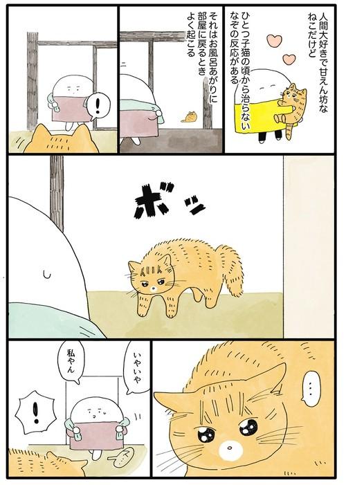 猫ちゃんのクセ漫画1