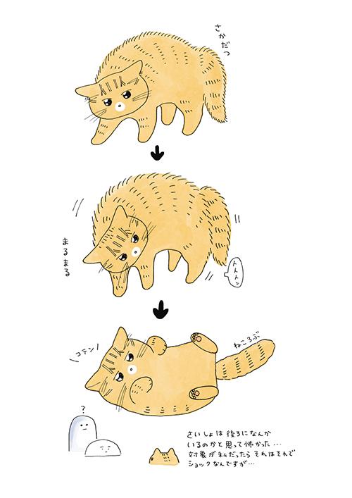 猫ちゃんのクセ漫画3