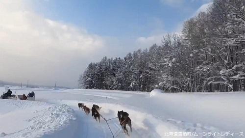 犬ぞり ムーンライトレディース