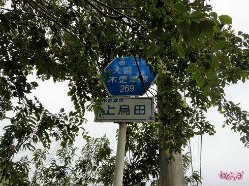 県道の標識も
