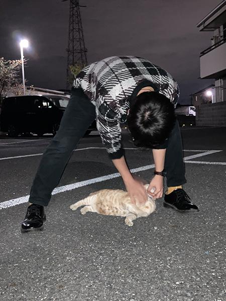 人と猫ちゃん
