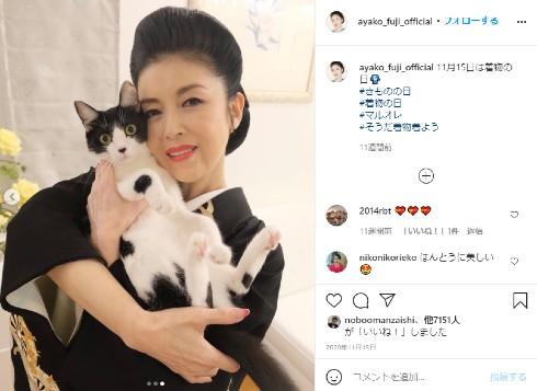 藤あや子 演歌 歌手 猫 マル オレオ Twitter インスタ