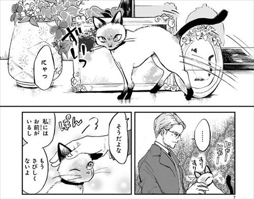 とあるおじさんとシャム猫の話
