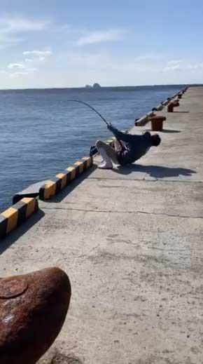 巨大 ホシエイ 釣り上げ 東京 離島 写真