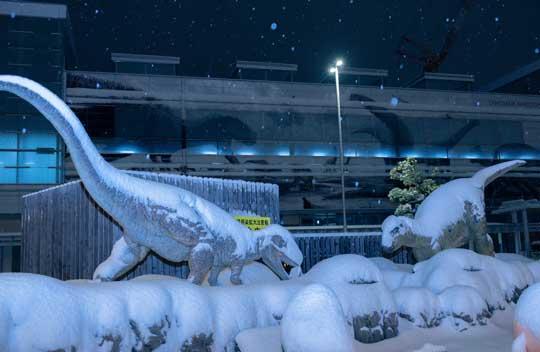 寒波 襲われた 福井駅 氷河期 恐竜 雪 写真