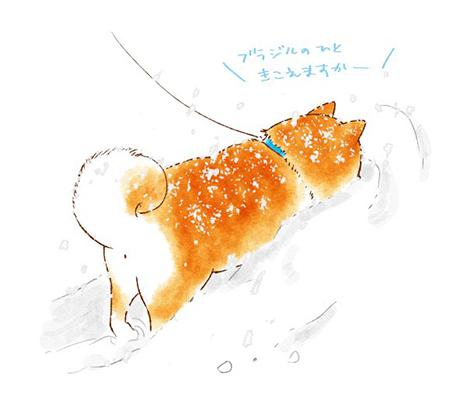 揚げパン柴犬