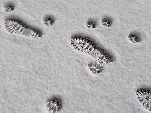 足跡を残す音が聞こえてきそう 新雪を踏んだような刺しゅうが本物のような美しさ