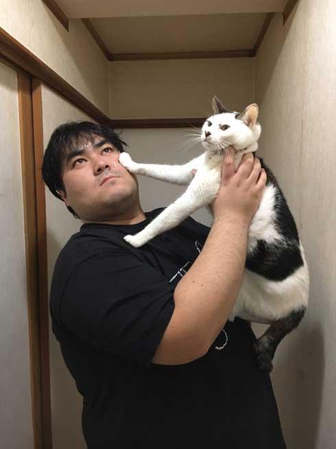 実家 猫 嫌そうな顔 スカート 澤部渡 猫の日