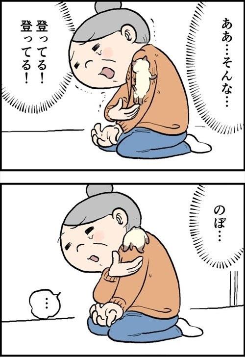 おふくちゃん