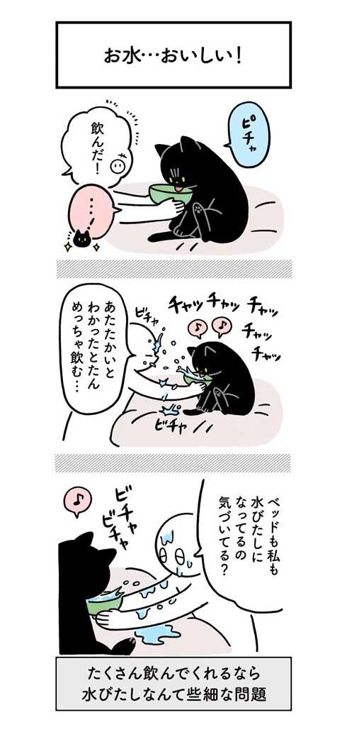 水 飲んでほしい 飼い主 不条理 猫 黒猫ろんと暮らしたら 漫画 AKR