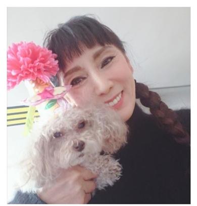 秋野暢子 犬 ティーカップ レイチェル 死去
