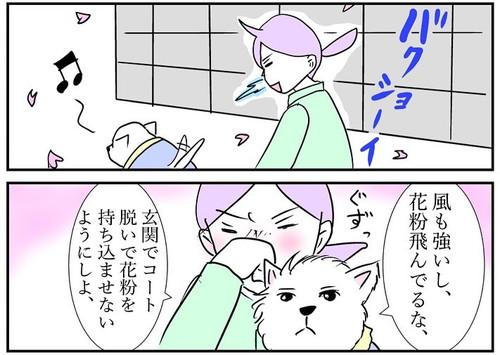 花粉ホイホイちーちゃん
