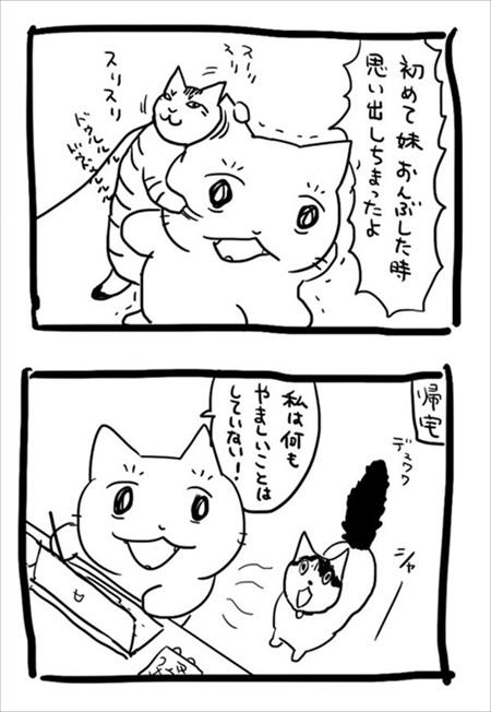 猫の愛に飢えていた