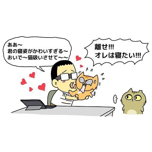 MeowMeowARUPACAさん