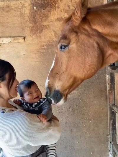 ドイくんと赤ちゃん