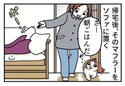 「犬の散歩とマフラーと」