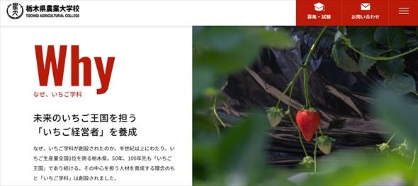 栃木県農業大学校に「いちご学科」が爆誕