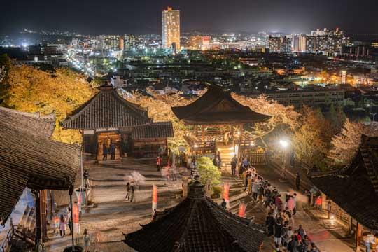 滋賀県 園城寺 三井寺 観月舞台 夜桜 美しい 写真