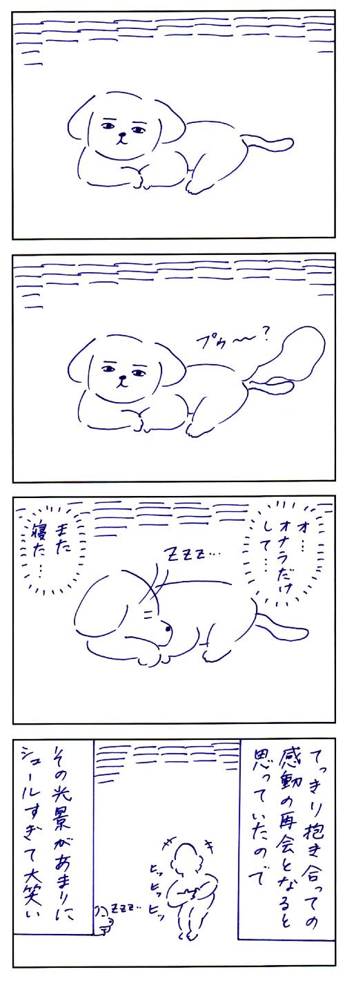 犬との思い出