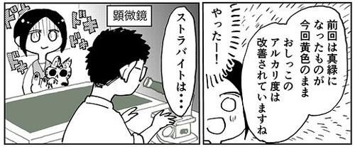 3本足のしじみちゃん