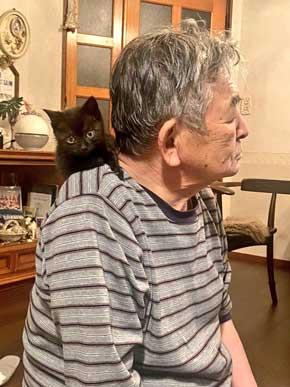 助けた 子猫 なつく お父さん 親父 拾ってきた 好かれてて笑った