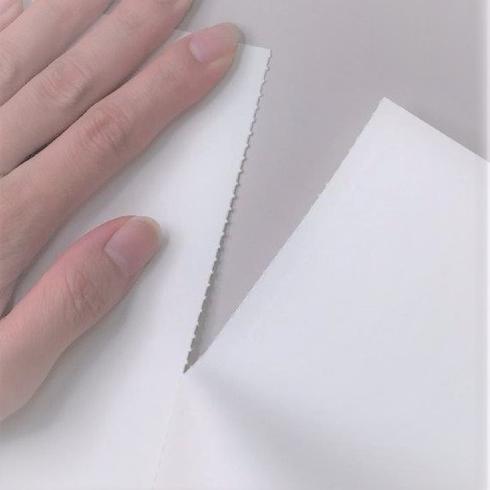 紙の見本帳ノート