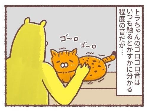 「トラちゃんのゴロゴロ音」普段はかすかにわかる程度のトラちゃんのゴロゴロ音