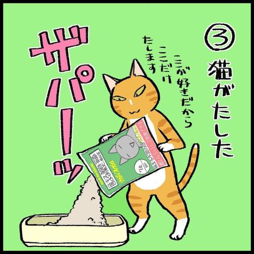 「猫トイレの怪異」