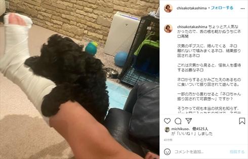 高嶋ちさ子 愛犬 ネロ 虐待 インスタ