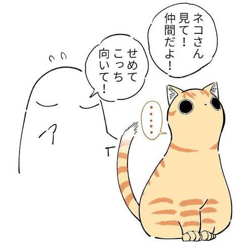 猫 親愛 あいさつ ゆっくり まばたき スルー 見てくれない 漫画